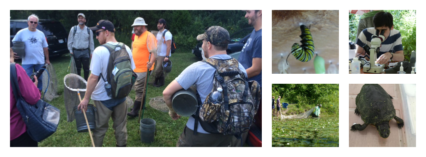 Collage of MPM BioBlitz activities
